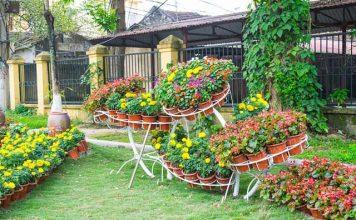 creating-beautiful-home-gardens