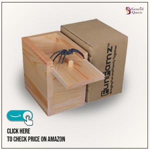 spider-prank-box-gift